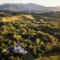 Michele Ciani di Aquila del Torre, il nuovo e-shop con degustazione di grandi vini e prodotti bio del Friuli.